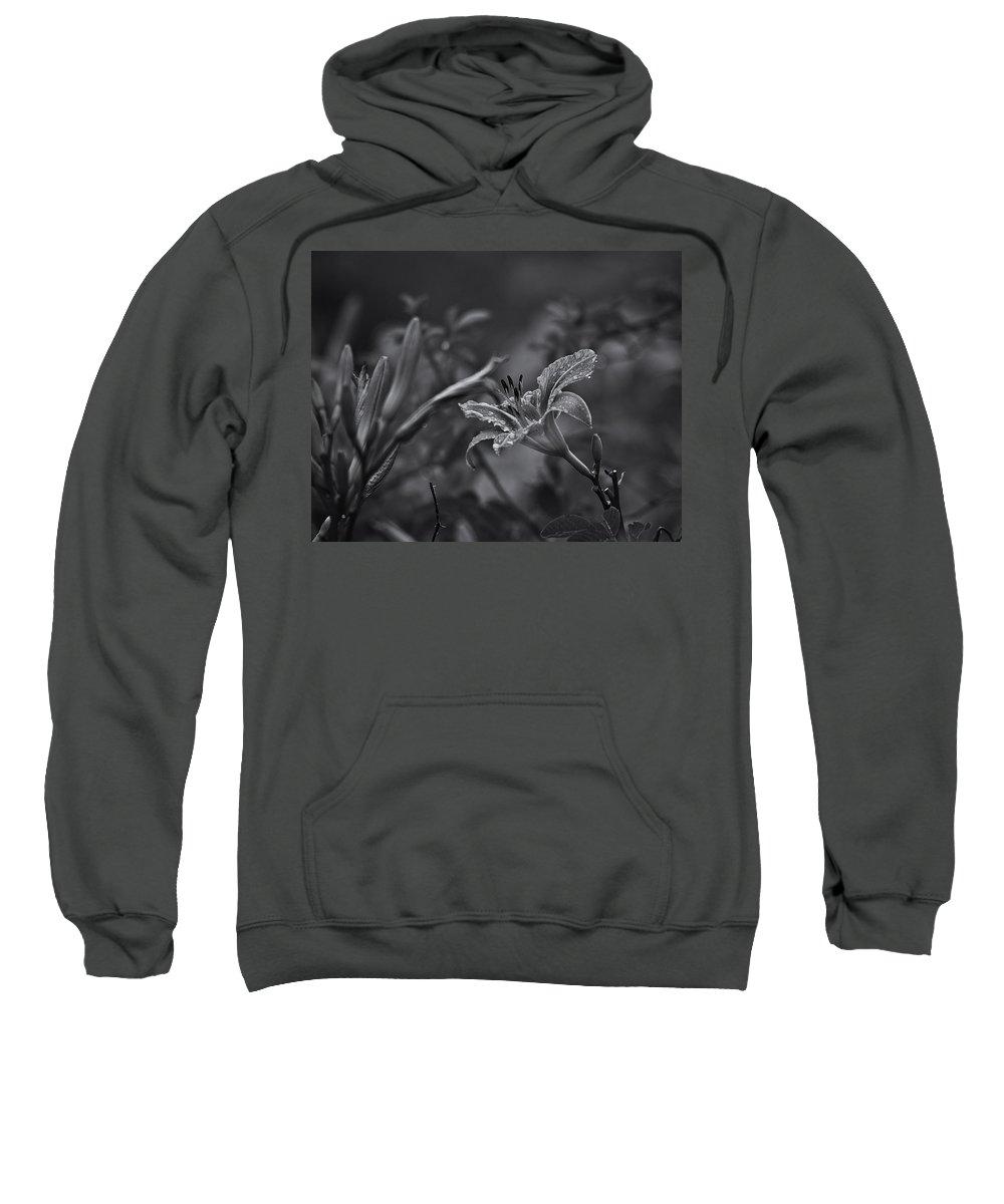 Tigerlily Hooded Sweatshirts T-Shirts
