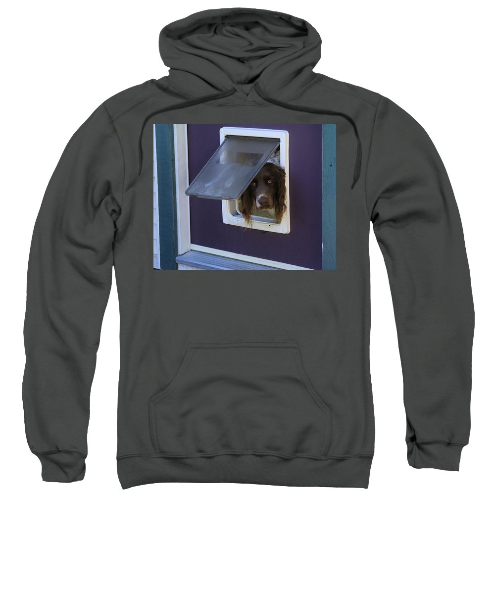 Razzle Sweatshirt featuring the photograph Razzle Who Goes There by John Greaves