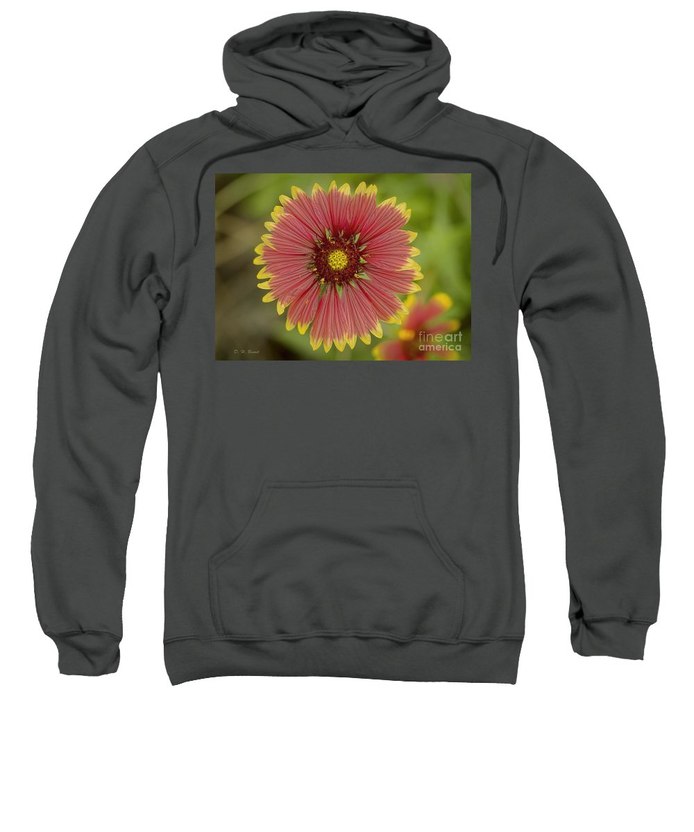Flower Sweatshirt featuring the photograph Red And Yellow by Deborah Benoit