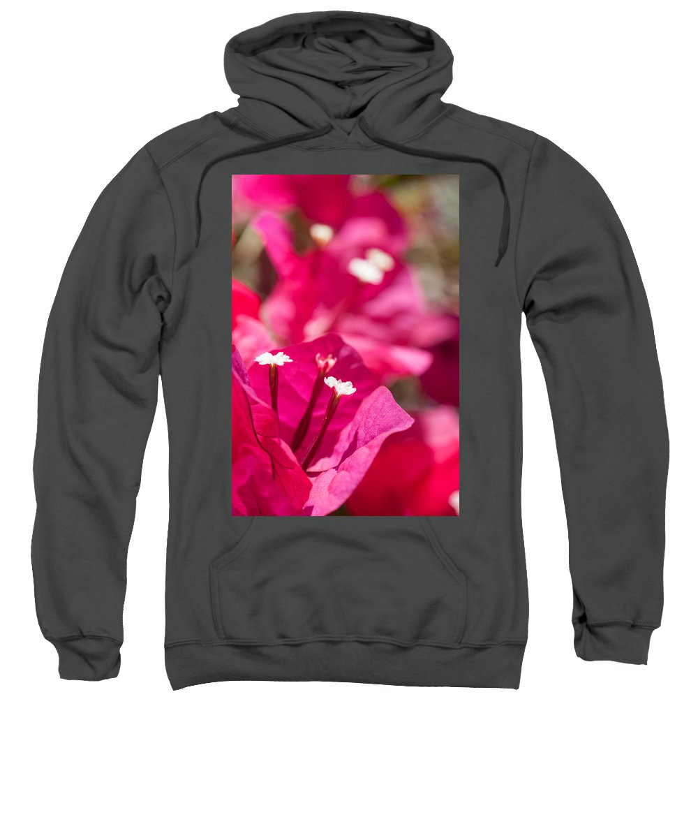 Ralf Sweatshirt featuring the photograph red Bougainvillea by Ralf Kaiser
