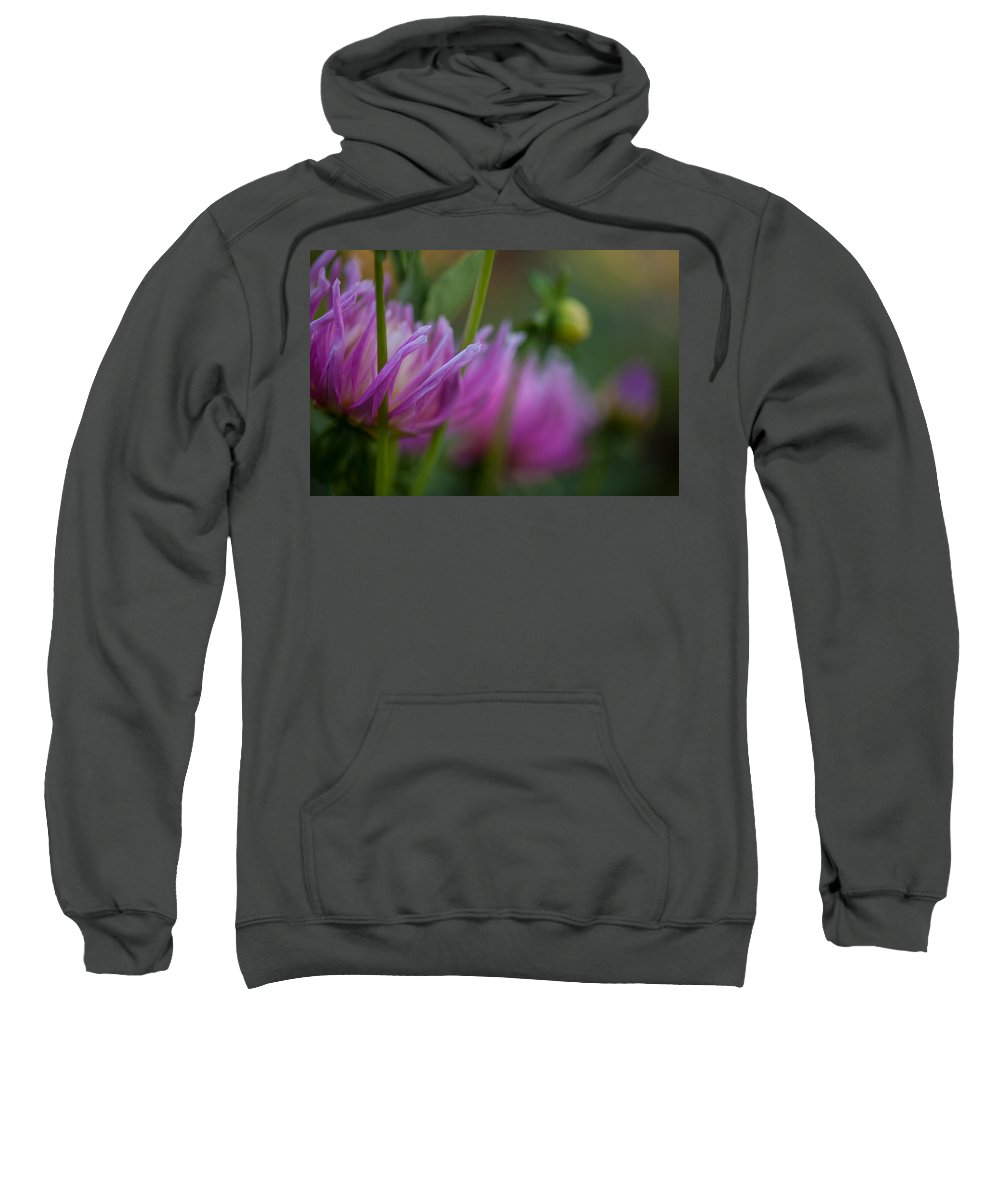 Flower Sweatshirt featuring the photograph Restrained by Mike Reid