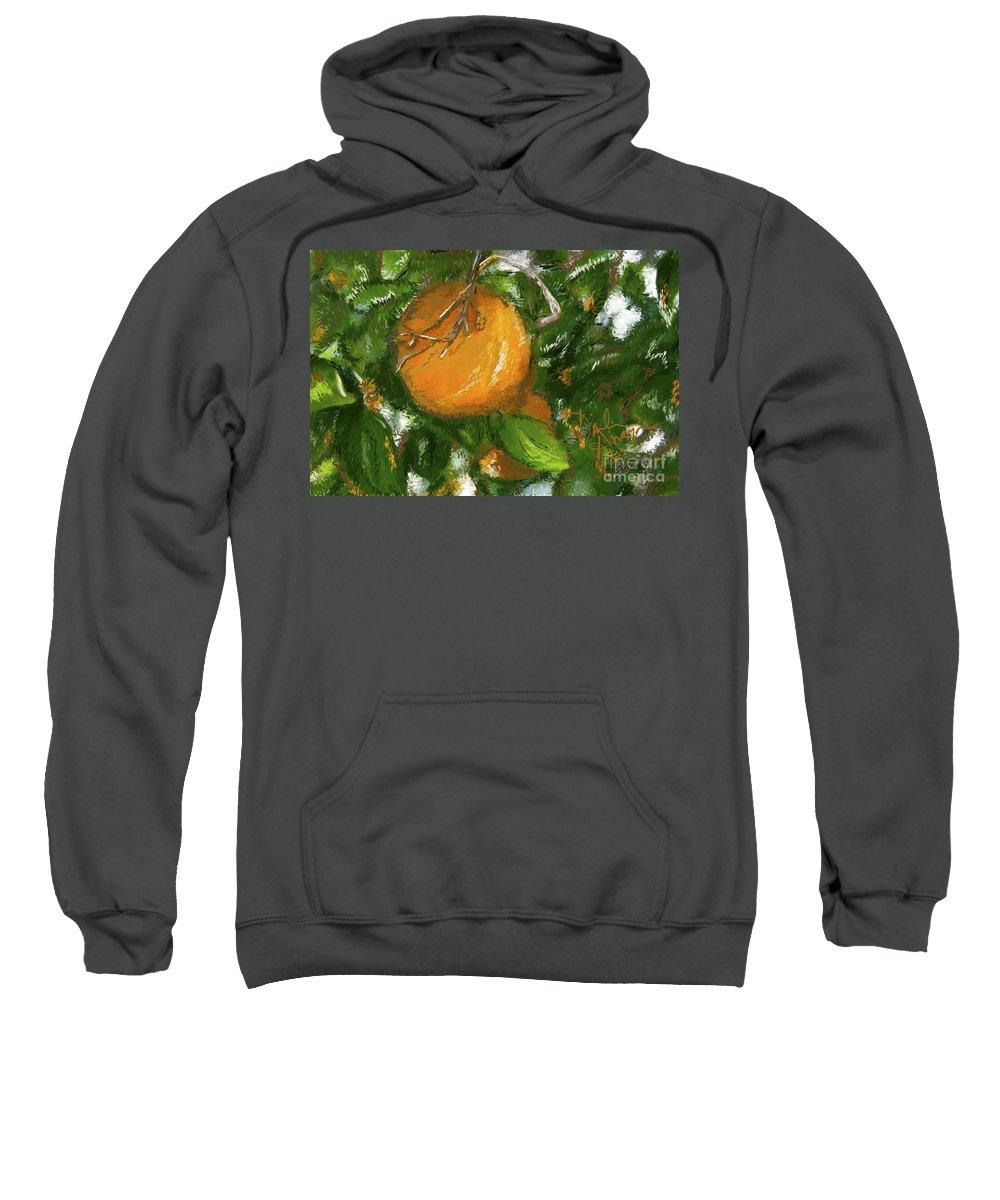 Orange Sweatshirt featuring the photograph Rio Grande Valley Oranges by Dinah Anaya