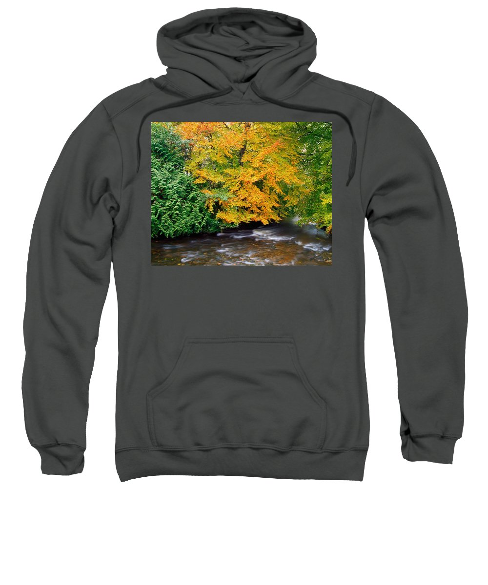 Autumn Colors Sweatshirt featuring the photograph River Camcor In The Fall Co Offaly by The Irish Image Collection