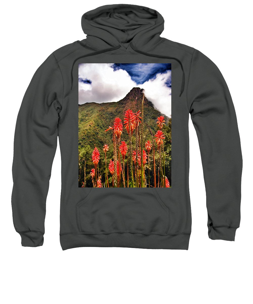 Rockets Red Glare Sweatshirt featuring the photograph Rocket's Red Glare by Skip Hunt