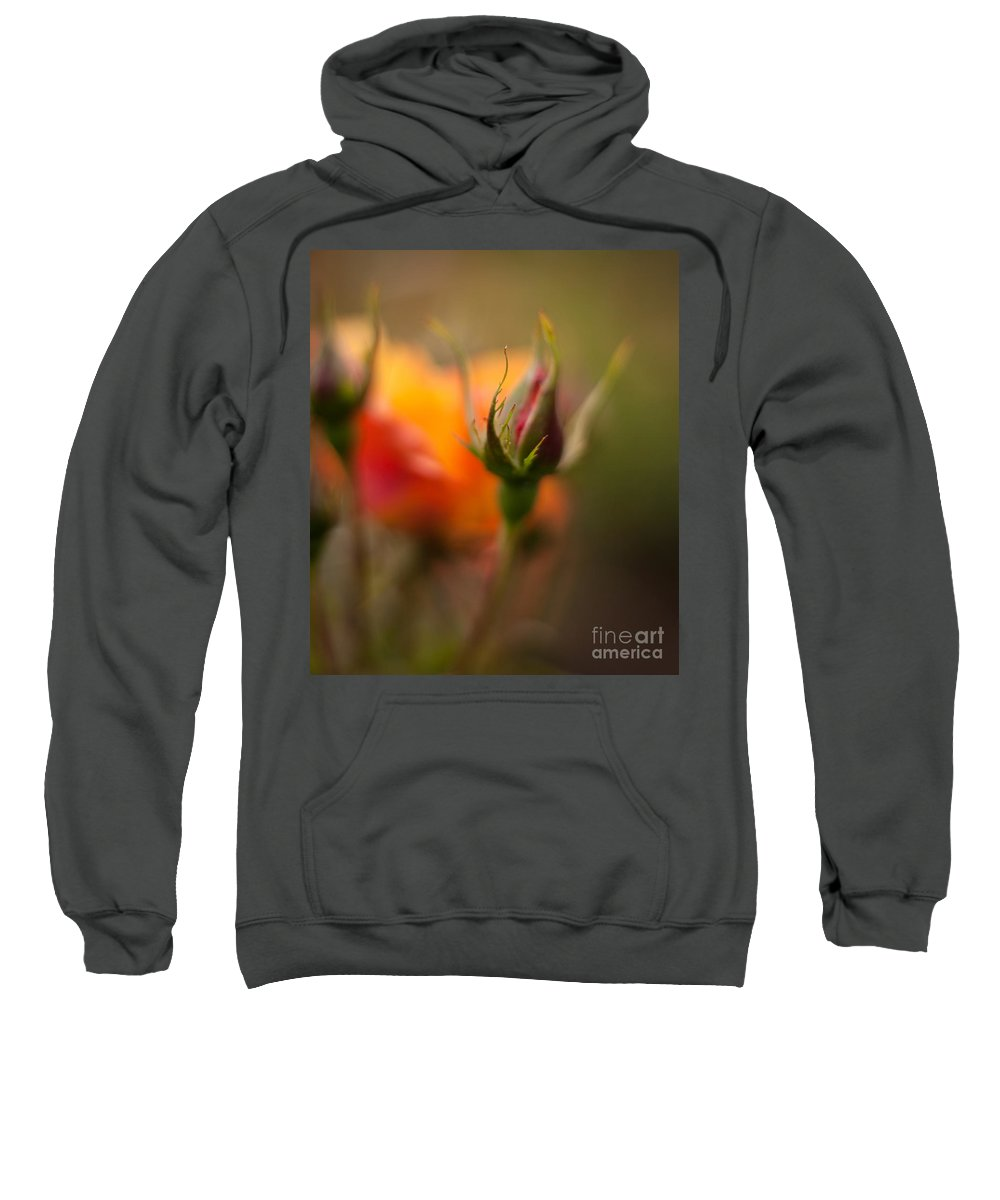 Flower Sweatshirt featuring the photograph Rosebud Details by Mike Reid