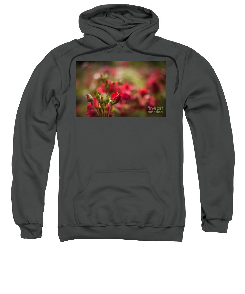 Flower Sweatshirt featuring the photograph Rouge Amongst by Mike Reid