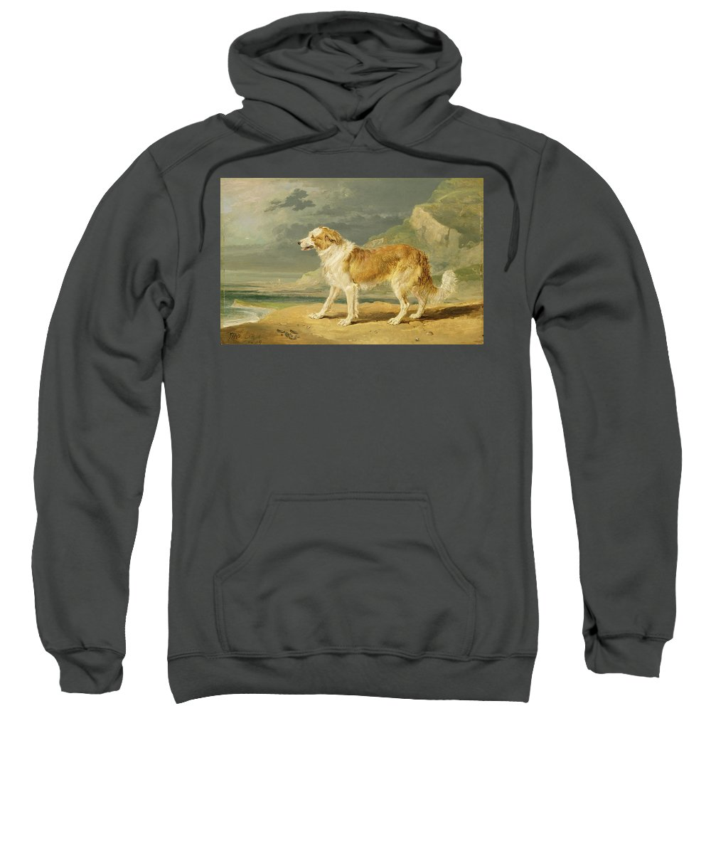 Xyc217381 Sweatshirt featuring the photograph Rough-coated Collie by James Ward