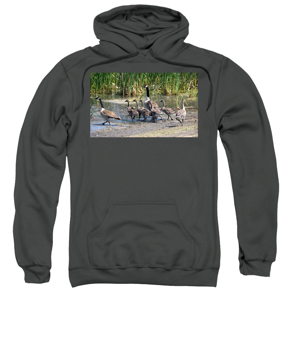 Goose Sweatshirt featuring the photograph Running For Water by Lori Tordsen