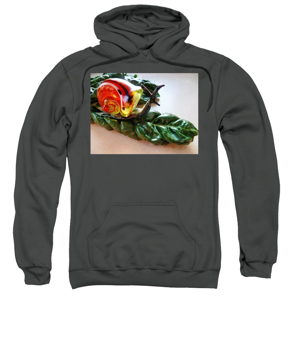 Salad Dressing Sweatshirt featuring the photograph Salad Dressing by Steve Taylor