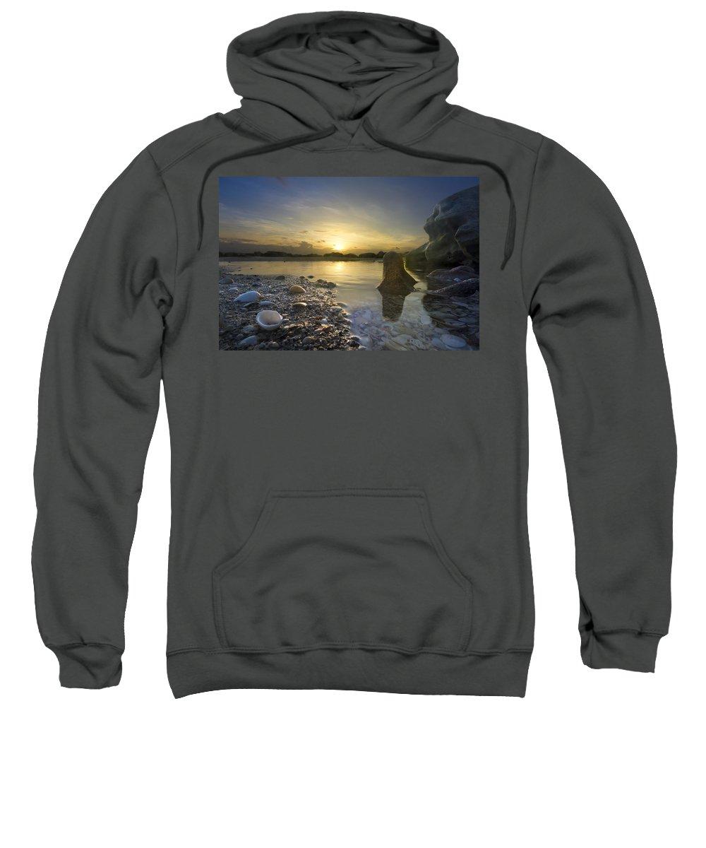 Clouds Sweatshirt featuring the photograph Seashells by Debra and Dave Vanderlaan