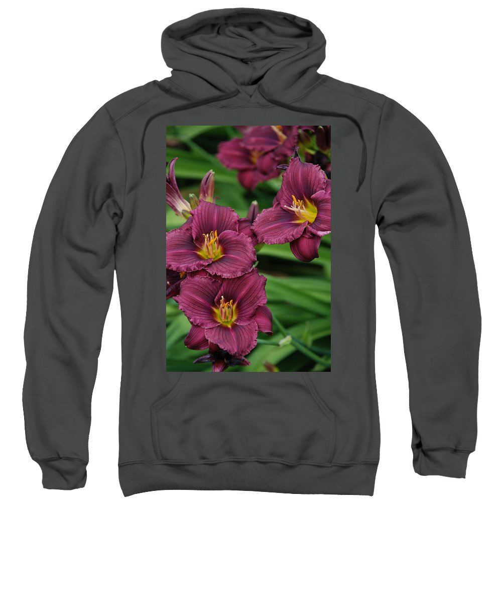 Flowers Sweatshirt featuring the photograph Seattle Blooms by Carol Eliassen