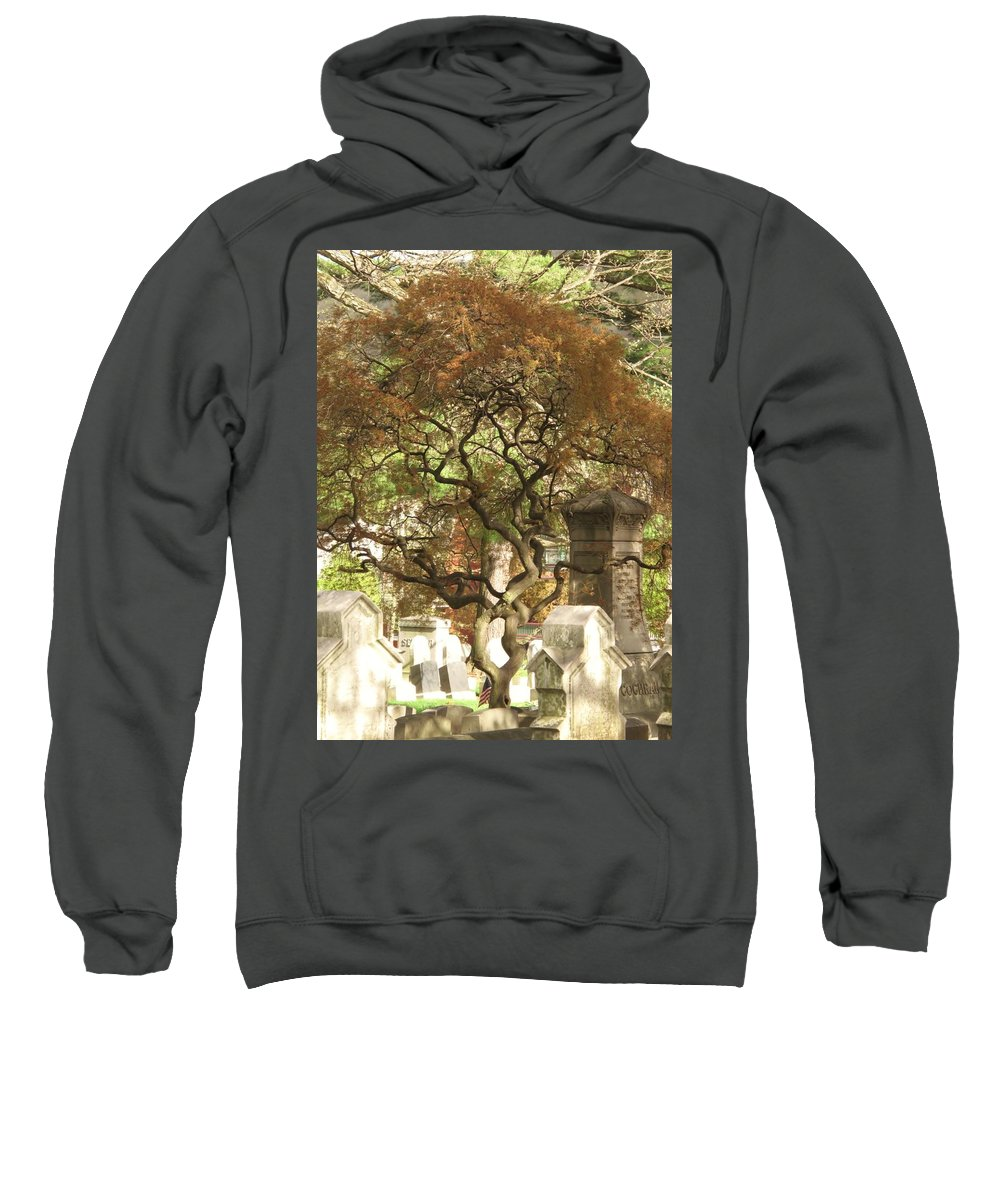 Graveyard Sweatshirt featuring the photograph Shade For The Weary by Michele Nelson