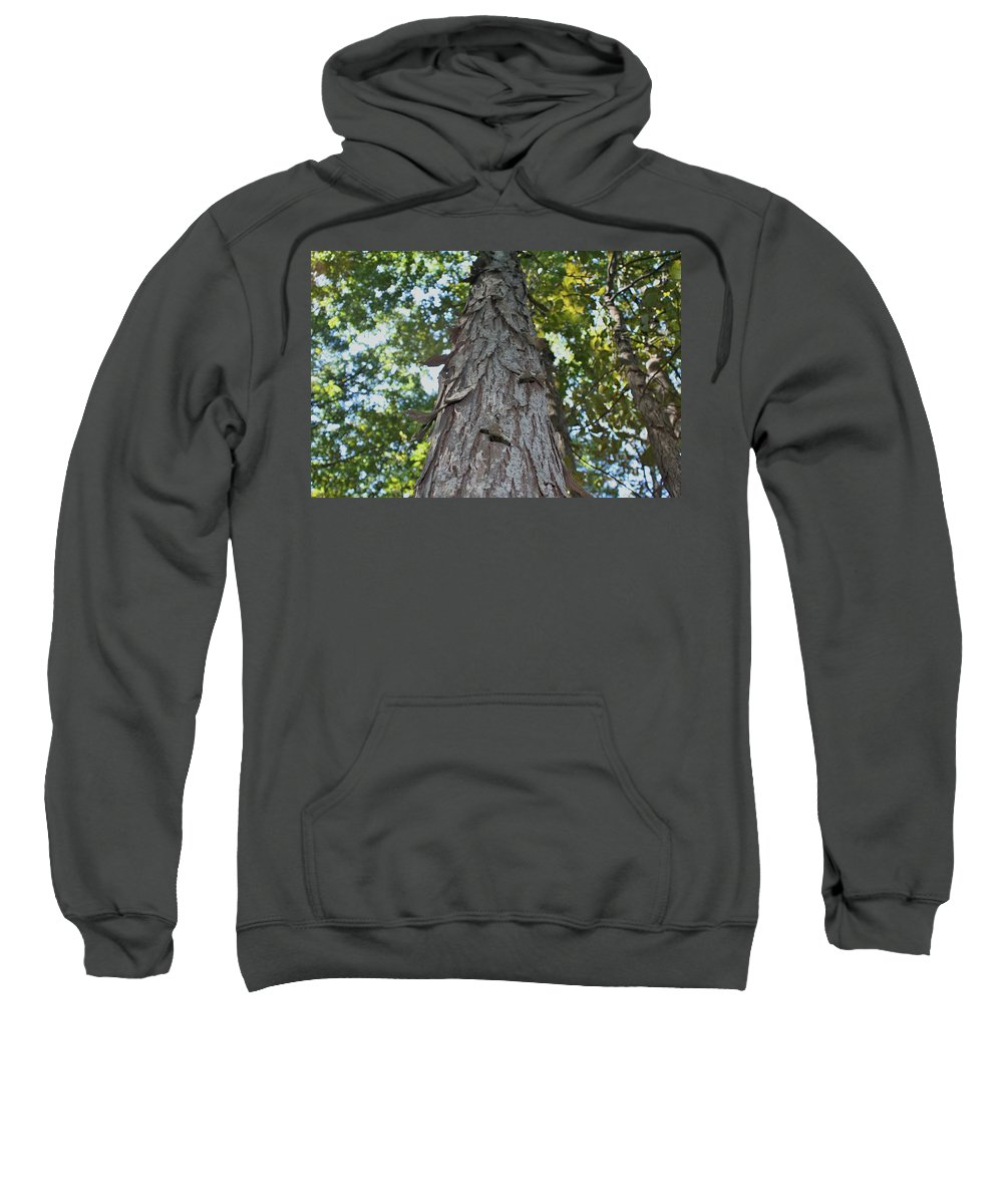 Tree Sweatshirt featuring the photograph Shag Bark by Barbara S Nickerson