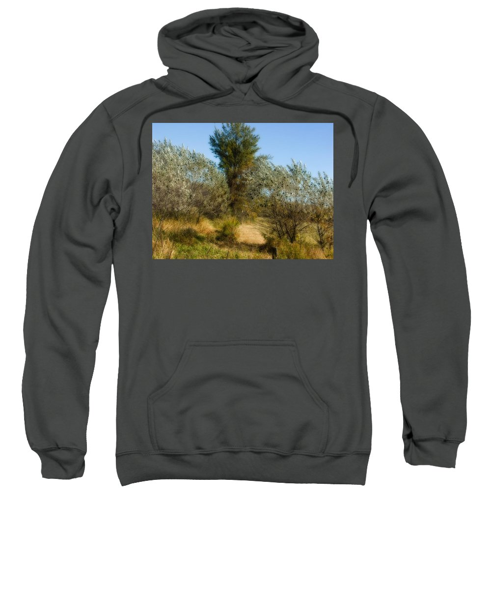 Xdop Sweatshirt featuring the photograph Shimmering Leaves by John Herzog