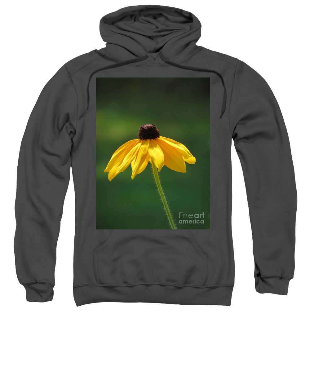 Black Sweatshirt featuring the photograph Shiner by Art Dingo