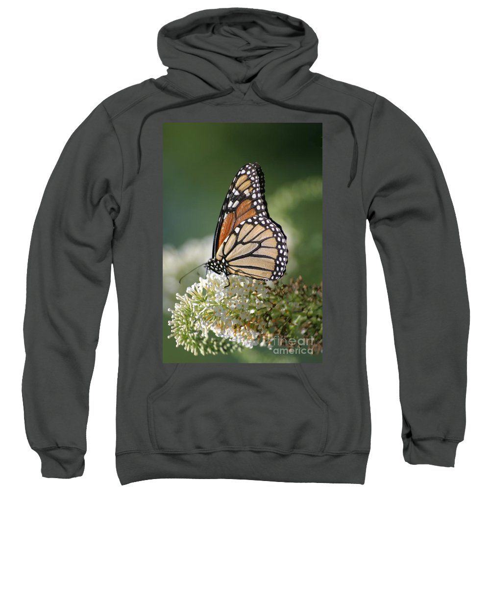 Butterfly Sweatshirt featuring the photograph Side Profile Of A Monarch by Living Color Photography Lorraine Lynch