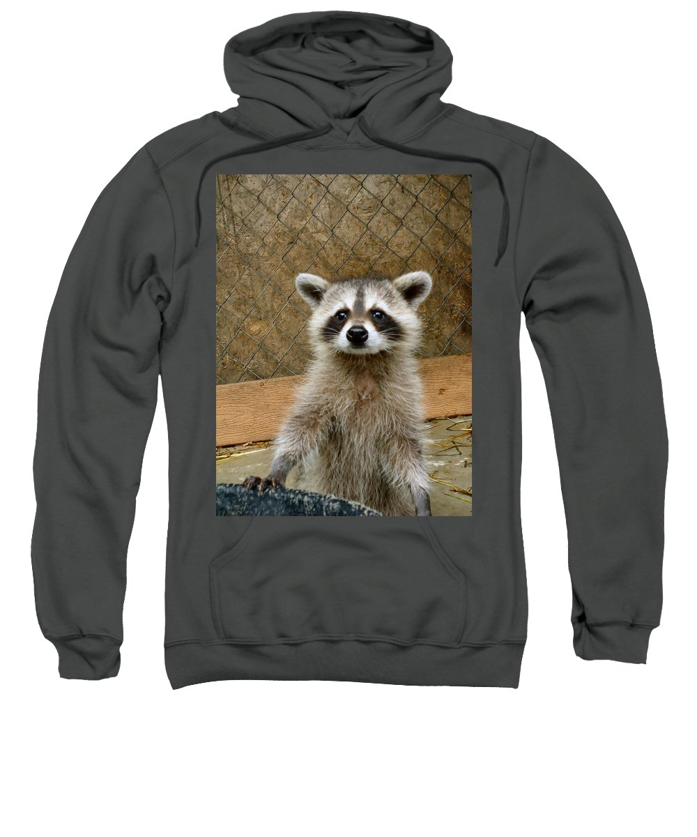 Antler Sweatshirt featuring the photograph Silly Girl by Art Dingo