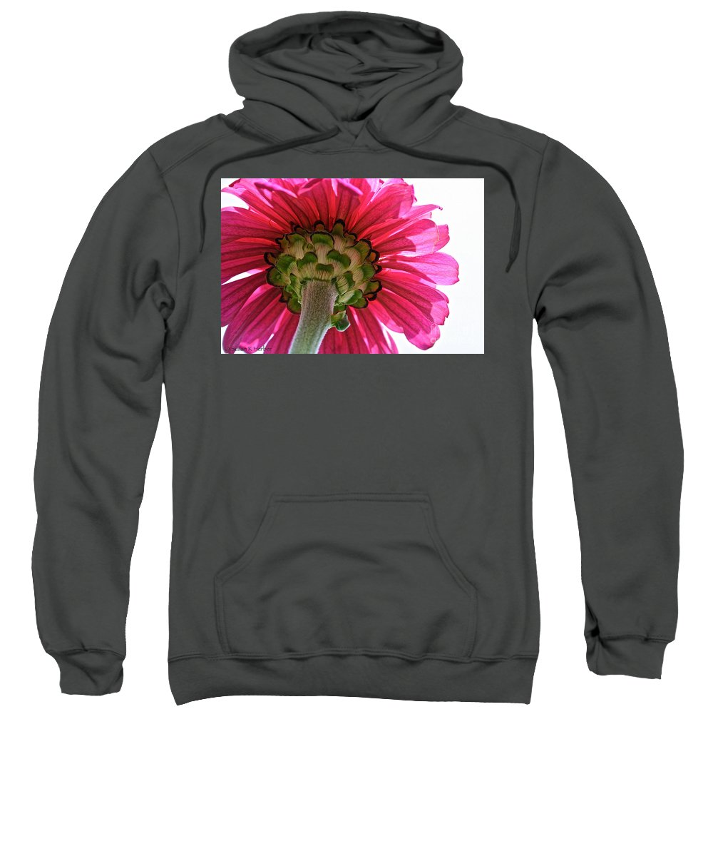 Plant Sweatshirt featuring the photograph Sky Petals by Susan Herber
