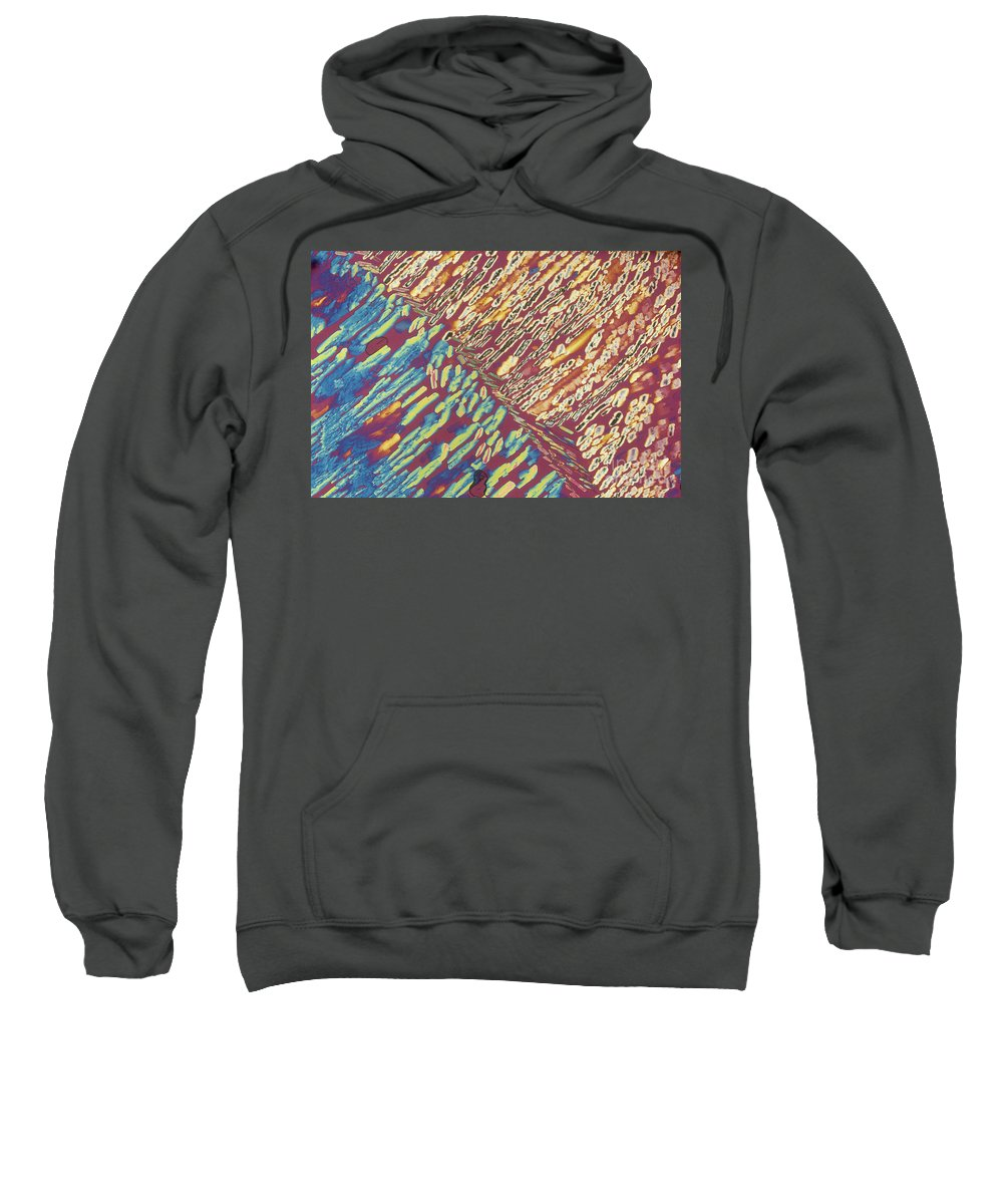 Science Sweatshirt featuring the photograph Slate Lm by Michael W. Davidson