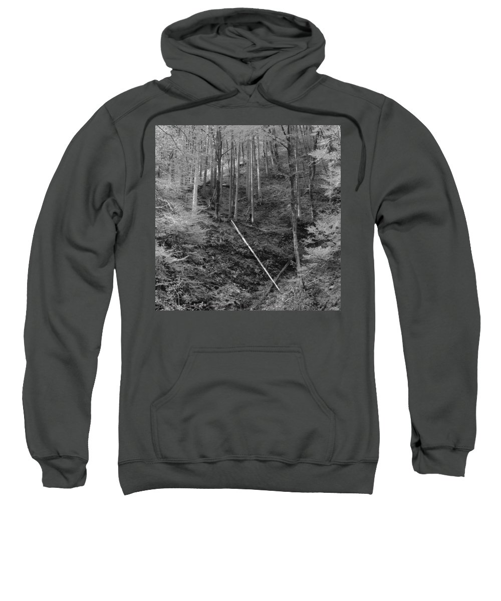 Slovenia Sweatshirt featuring the photograph Slovenian Forest In Black And White by Greg Matchick