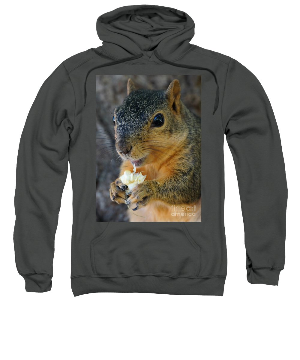 Squirrel Sweatshirt featuring the photograph Smiley by Lori Tordsen