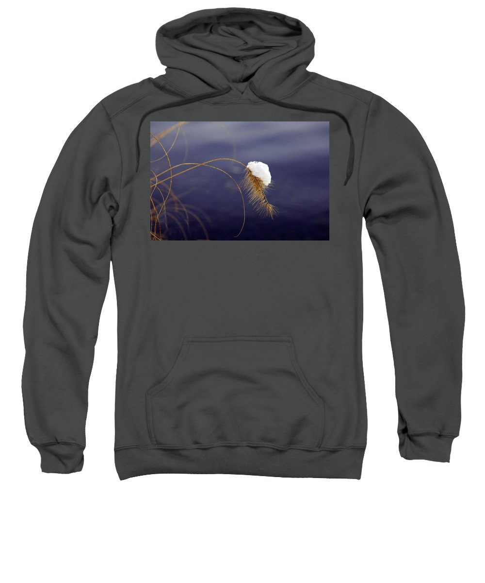 Snow Sweatshirt featuring the photograph Snow Weed by Francesa Miller