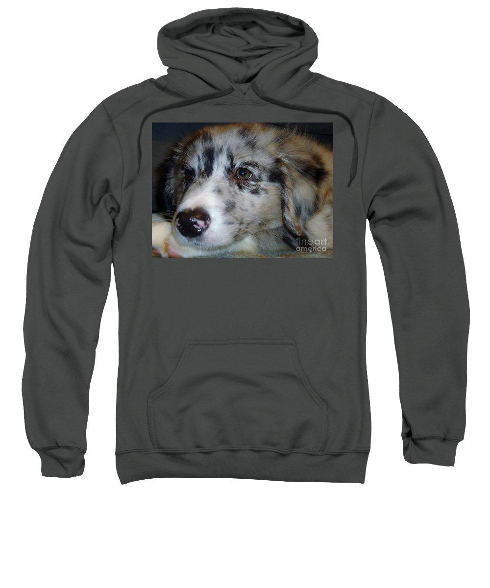 Puppy Sweatshirt featuring the photograph Softness by Art Dingo
