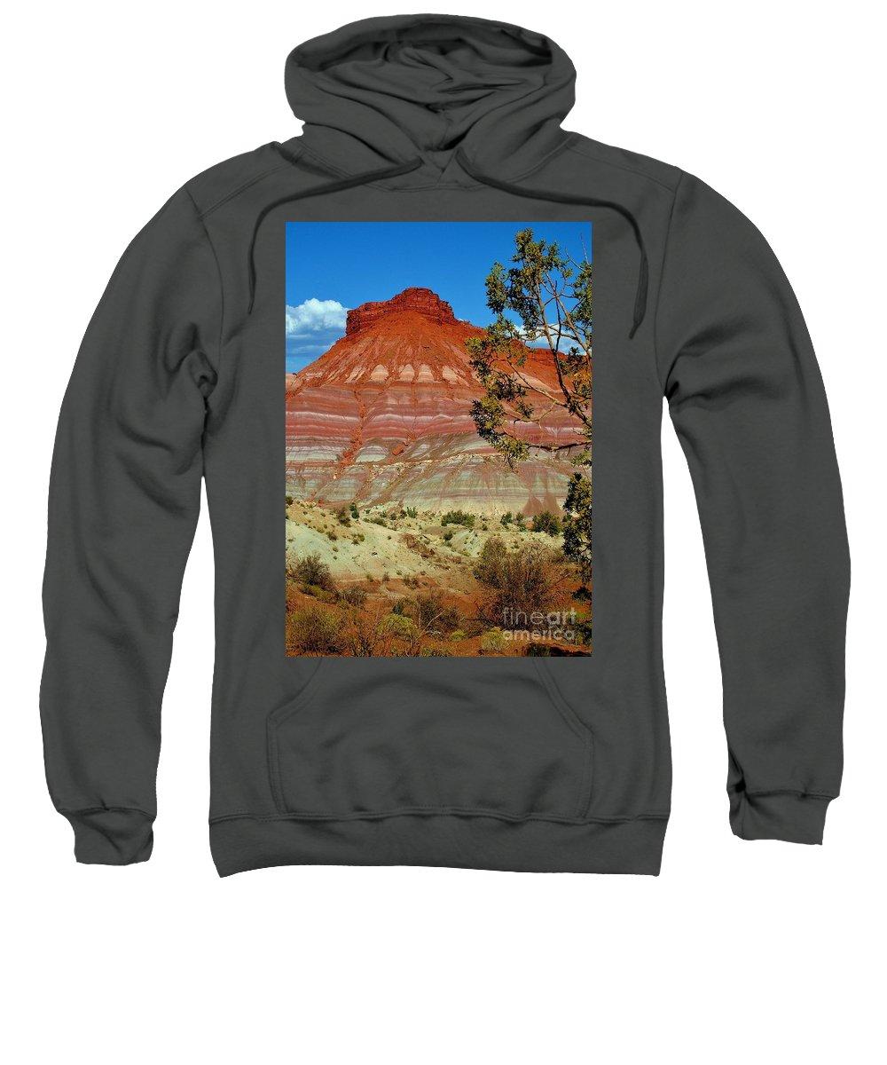 Mountain Sweatshirt featuring the photograph Solitude by Ellen Heaverlo