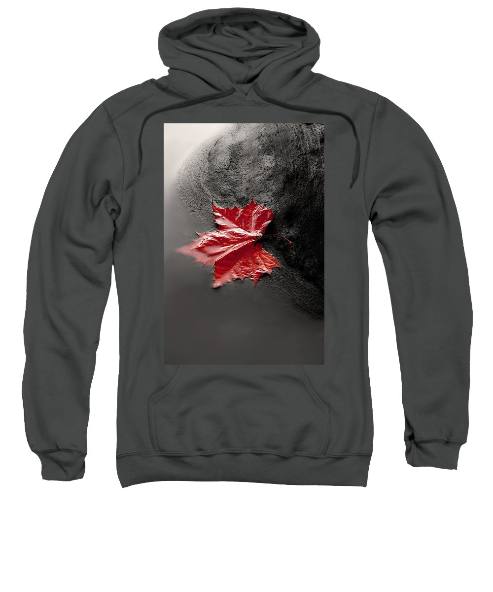 Single Red Leaf Sweatshirt featuring the photograph Sound Of Silence by Gray Artus