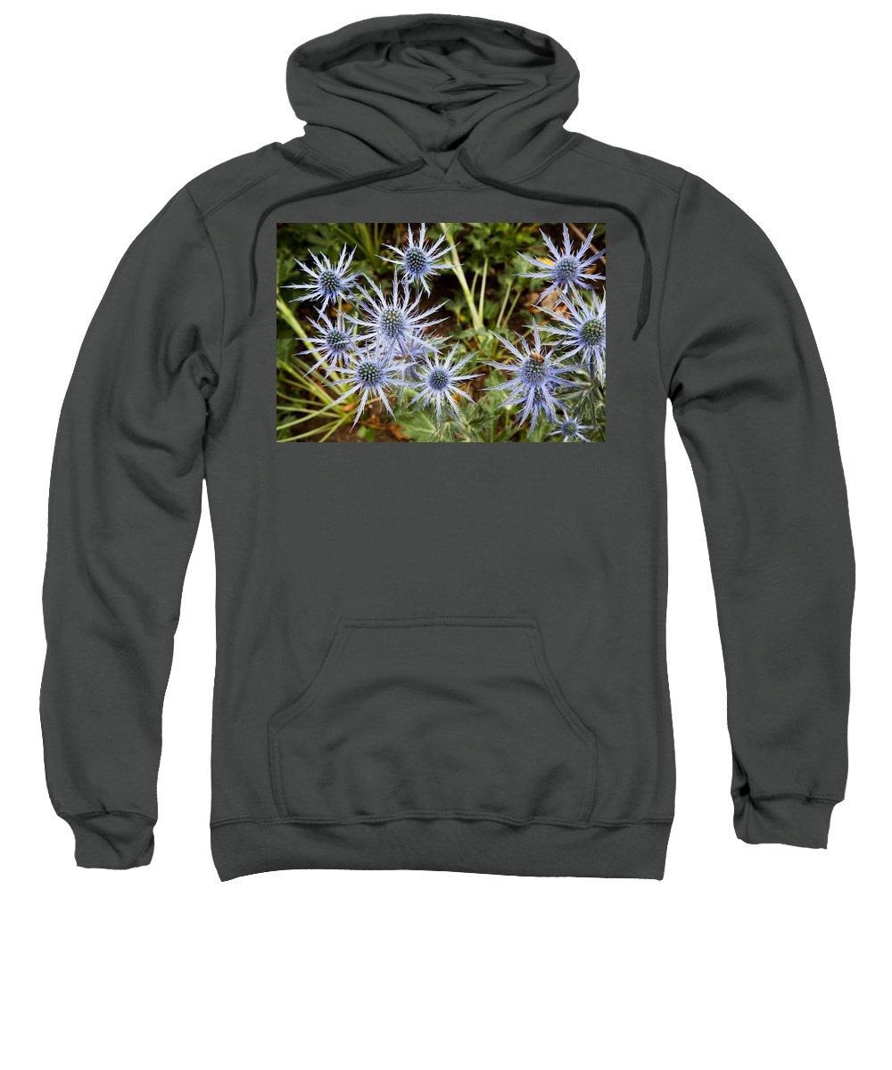 Blue Flowers Sweatshirt featuring the photograph Spectacular by Kelley King