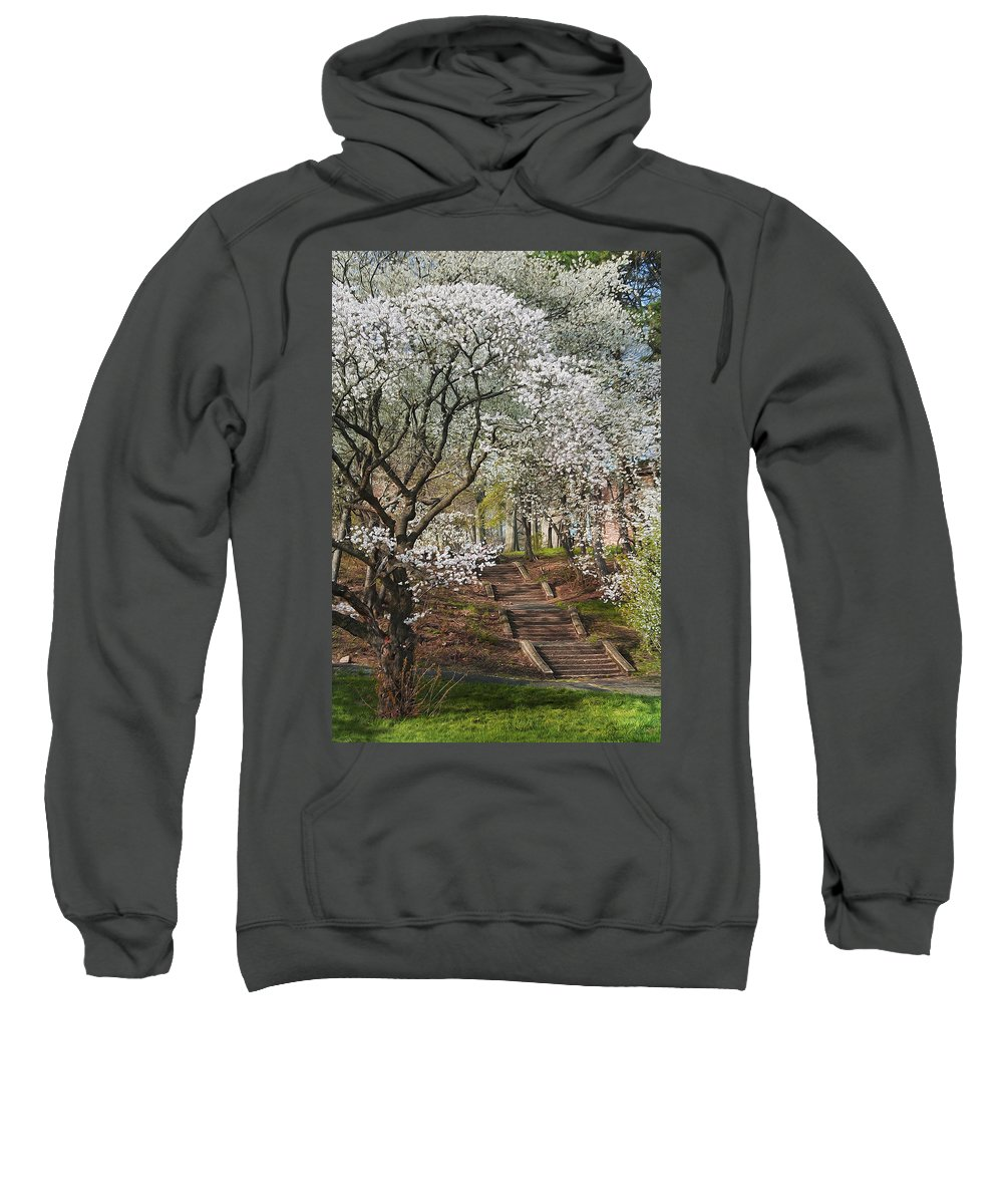 Trees Sweatshirt featuring the photograph Stairway To Happiness by Maggie Magee Molino