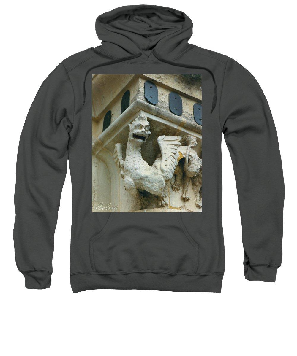Stone Sweatshirt featuring the photograph Stone Beastie by Diana Haronis