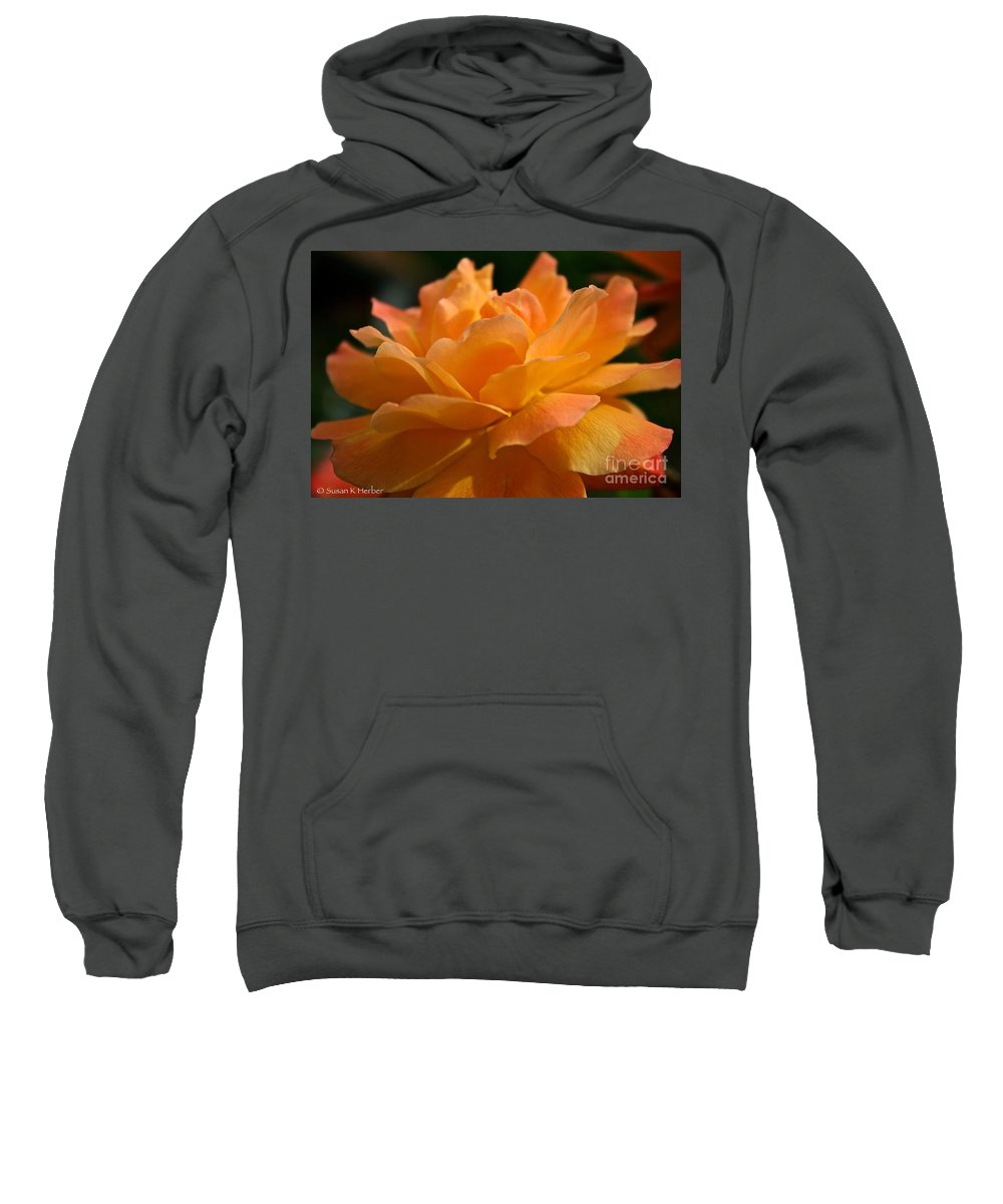Plant Sweatshirt featuring the photograph Strike It Rich Rose by Susan Herber