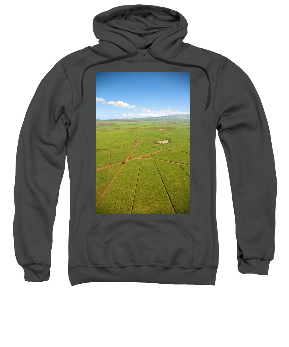 Above Sweatshirt featuring the photograph Sugar Cane Fields by Ron Dahlquist - Printscapes