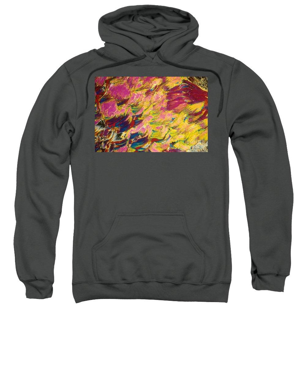 Sugar Sweatshirt featuring the photograph Sugar Crystal by Michael W. Davidson