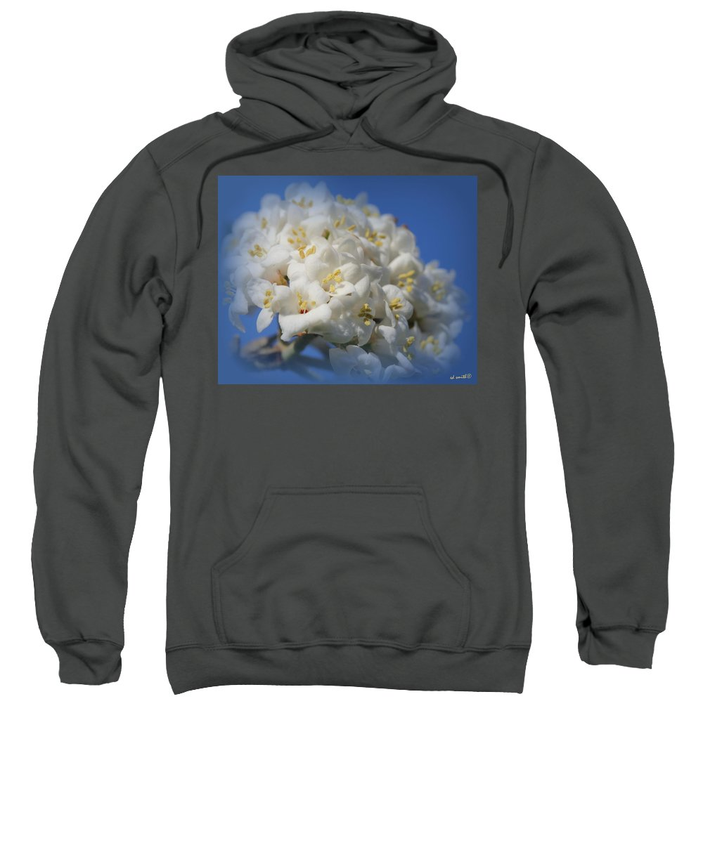 Summer Bunches Sweatshirt featuring the photograph Summer Bunches by Ed Smith