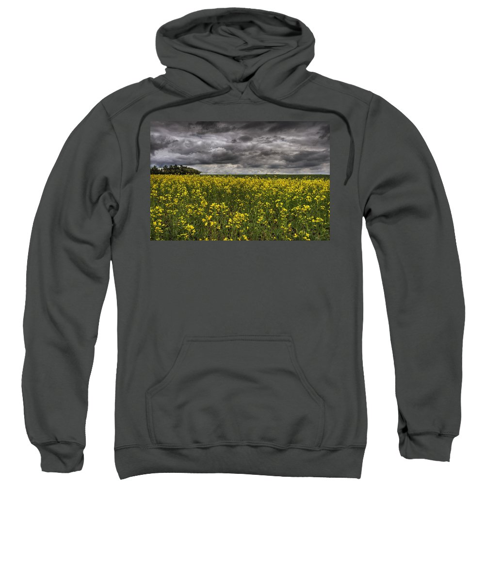 Canola Sweatshirt featuring the photograph Summer Storm Clouds Over A Canola Field by Dan Jurak