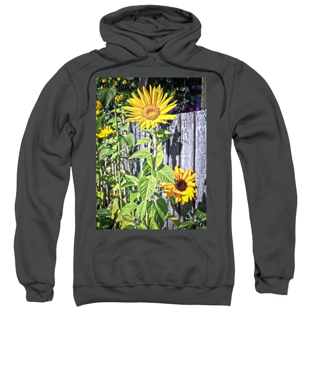 Sunflower Sweatshirt featuring the photograph Sunflower Fence by Steve McKinzie