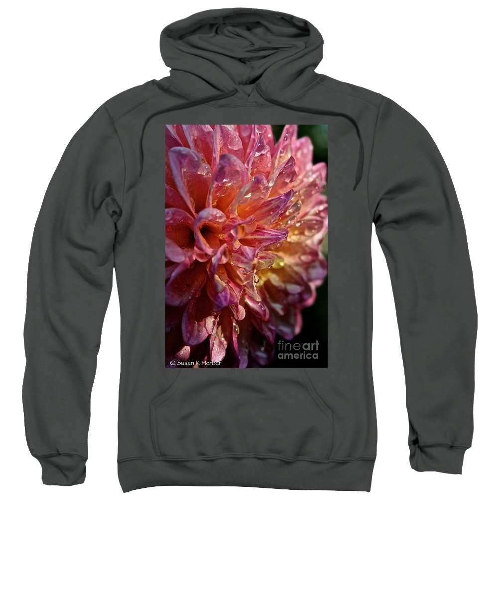 Outdoors Sweatshirt featuring the photograph Sunset Dahlia by Susan Herber