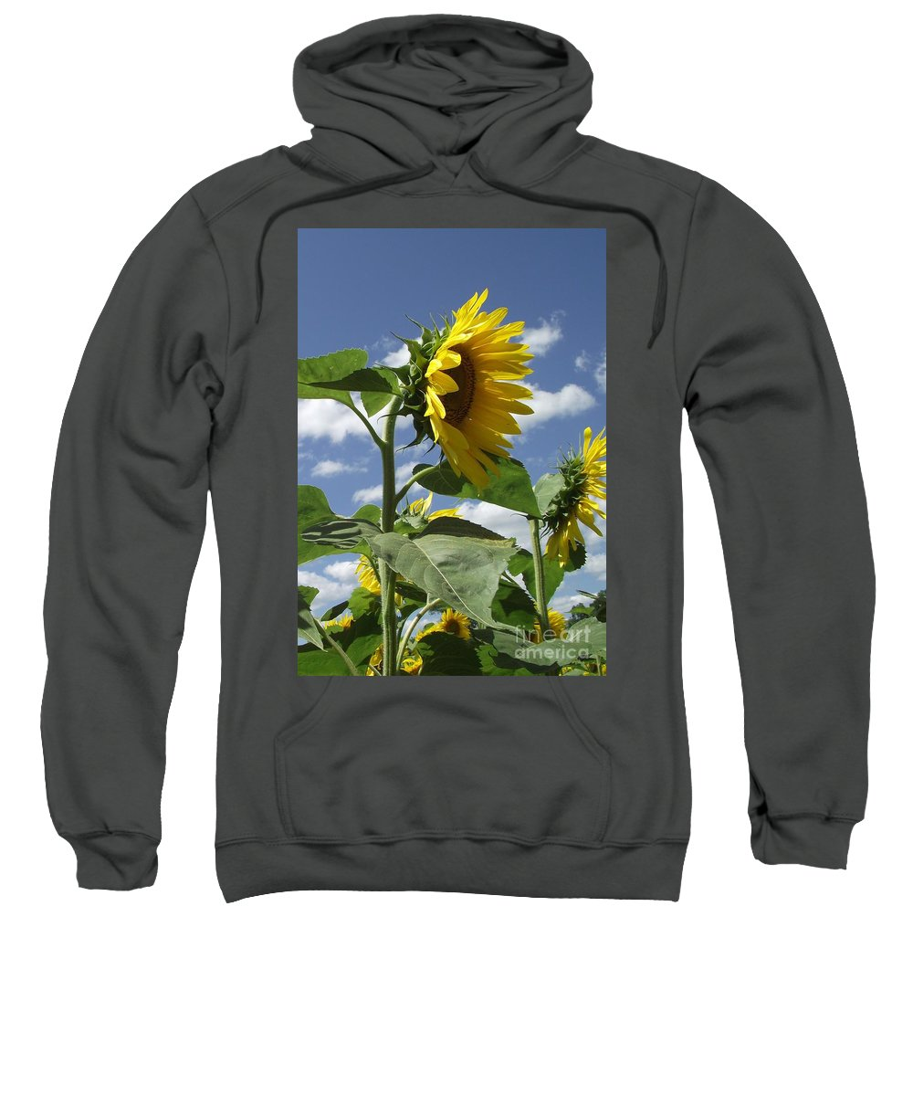 Sunflowers Sweatshirt featuring the photograph Sunshine Flowers by Michelle Welles
