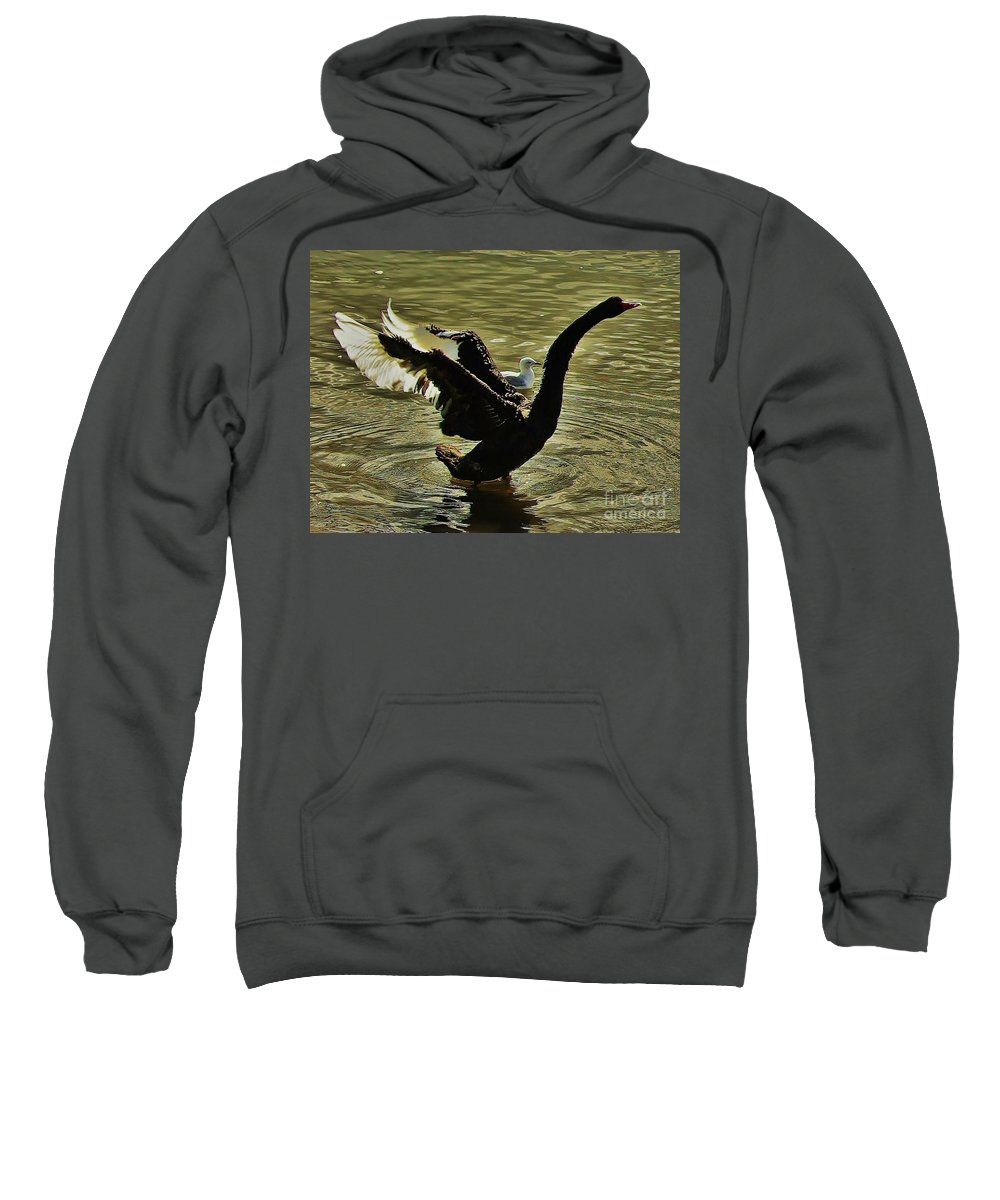 Australia Sweatshirt featuring the photograph Swan Dance 2 by Blair Stuart