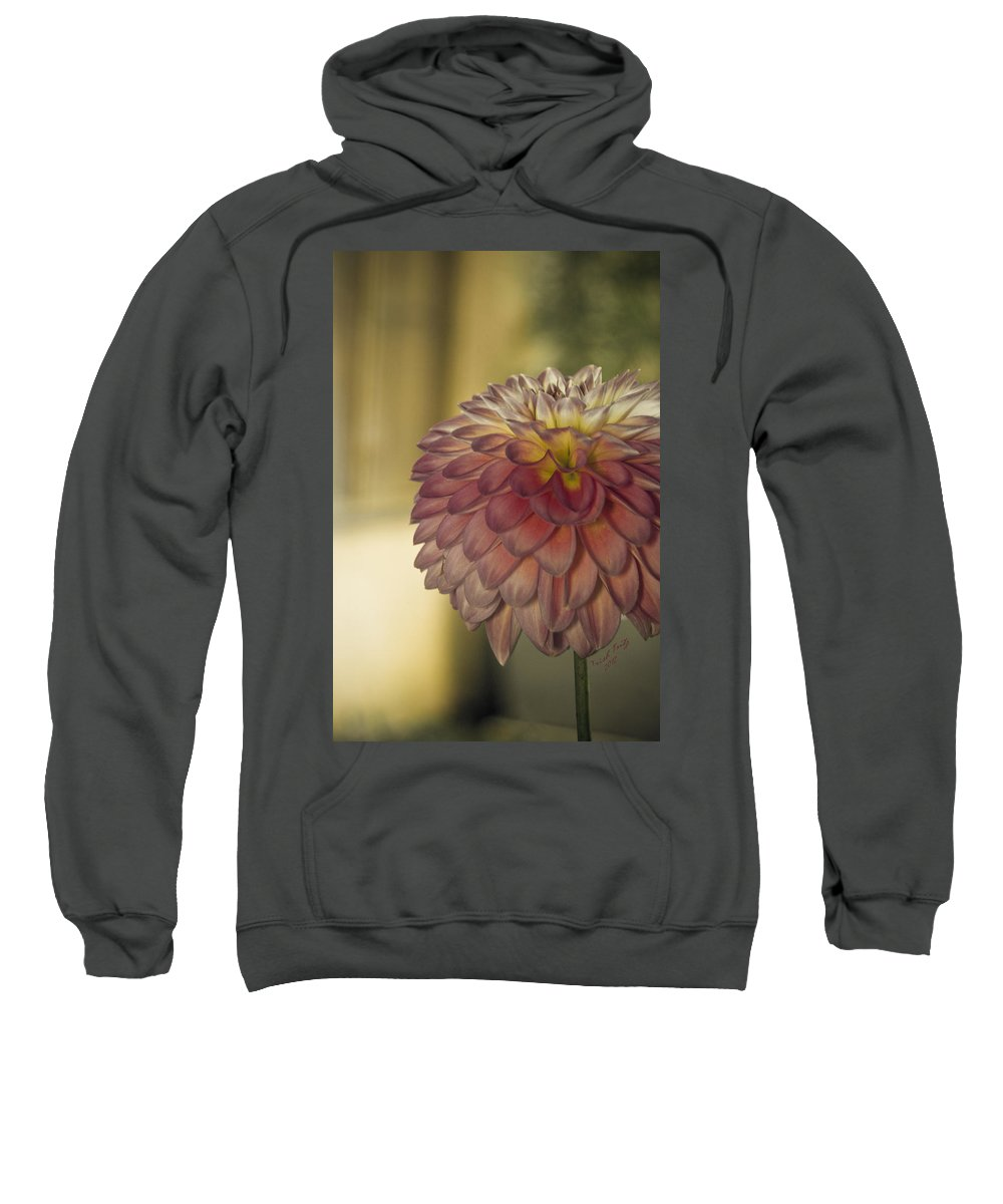 Flower Sweatshirt featuring the photograph Sweet Shot by Trish Tritz