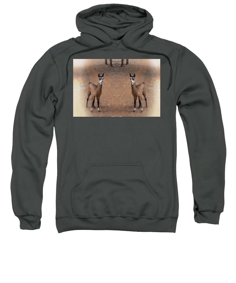 Juvenile Sweatshirt featuring the photograph Synchronized by Douglas Barnard