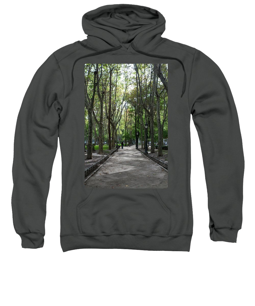 Madrid Sweatshirt featuring the photograph Tall Trees Of Madrid by Lorraine Devon Wilke
