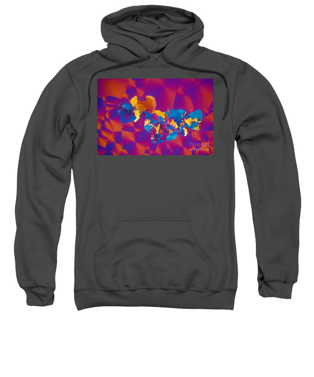 Chemistry Sweatshirt featuring the photograph Testosterone Crystal by Michael W. Davidson