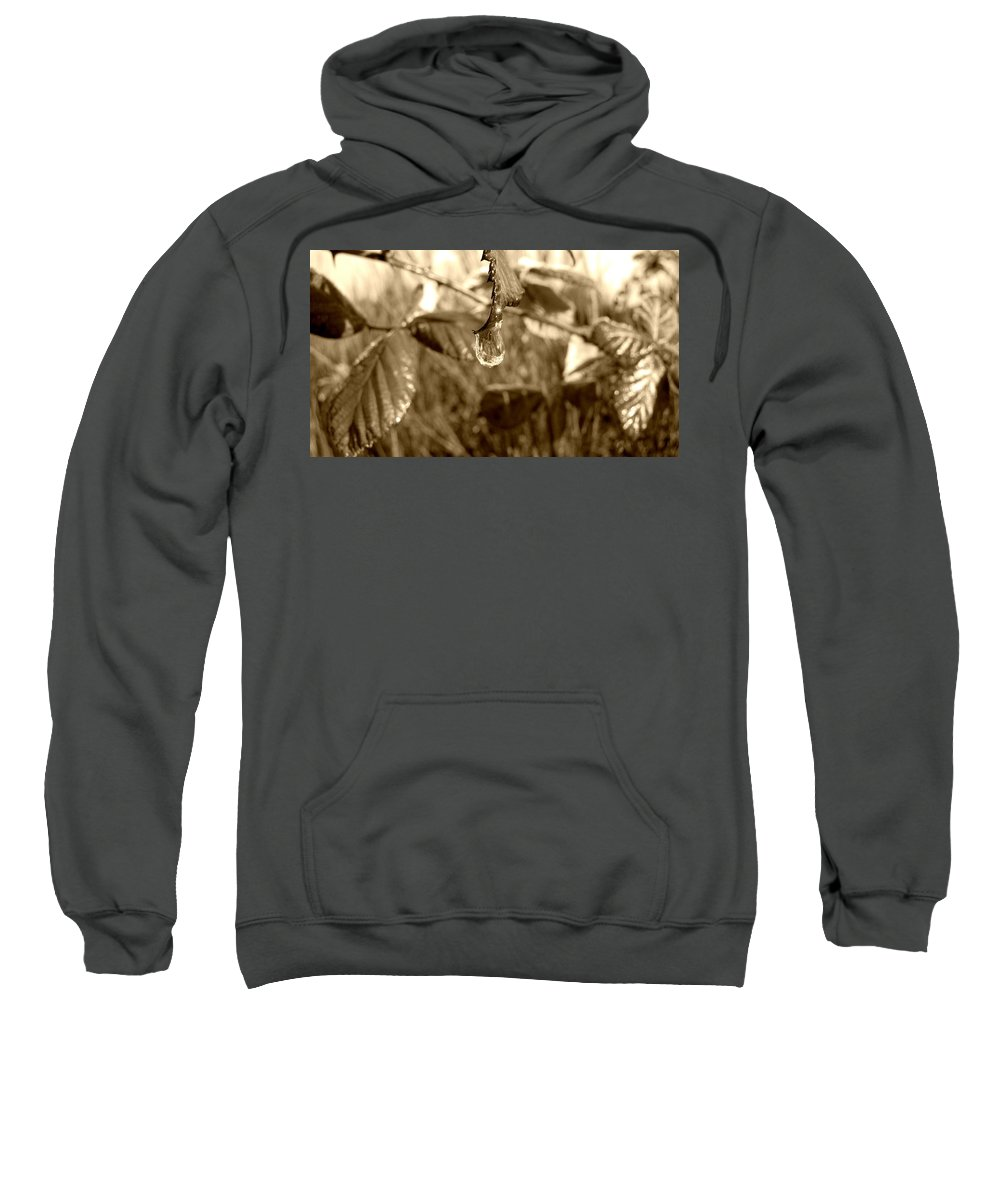Snow Sweatshirt featuring the photograph Thawing Sepia Leaves by Katie Wing Vigil