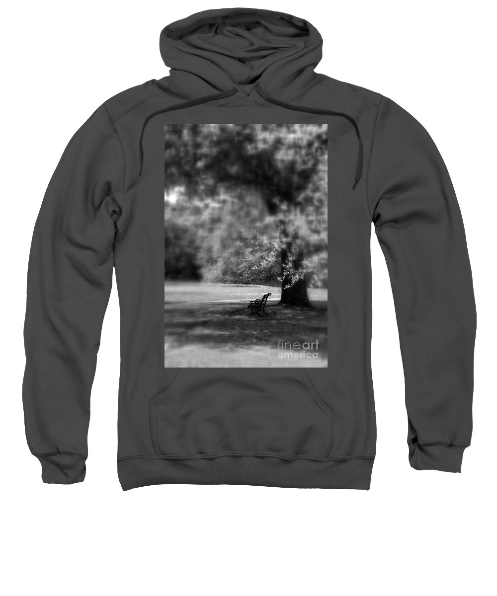 Bench Sweatshirt featuring the photograph The Bench In The Park by Susanne Van Hulst