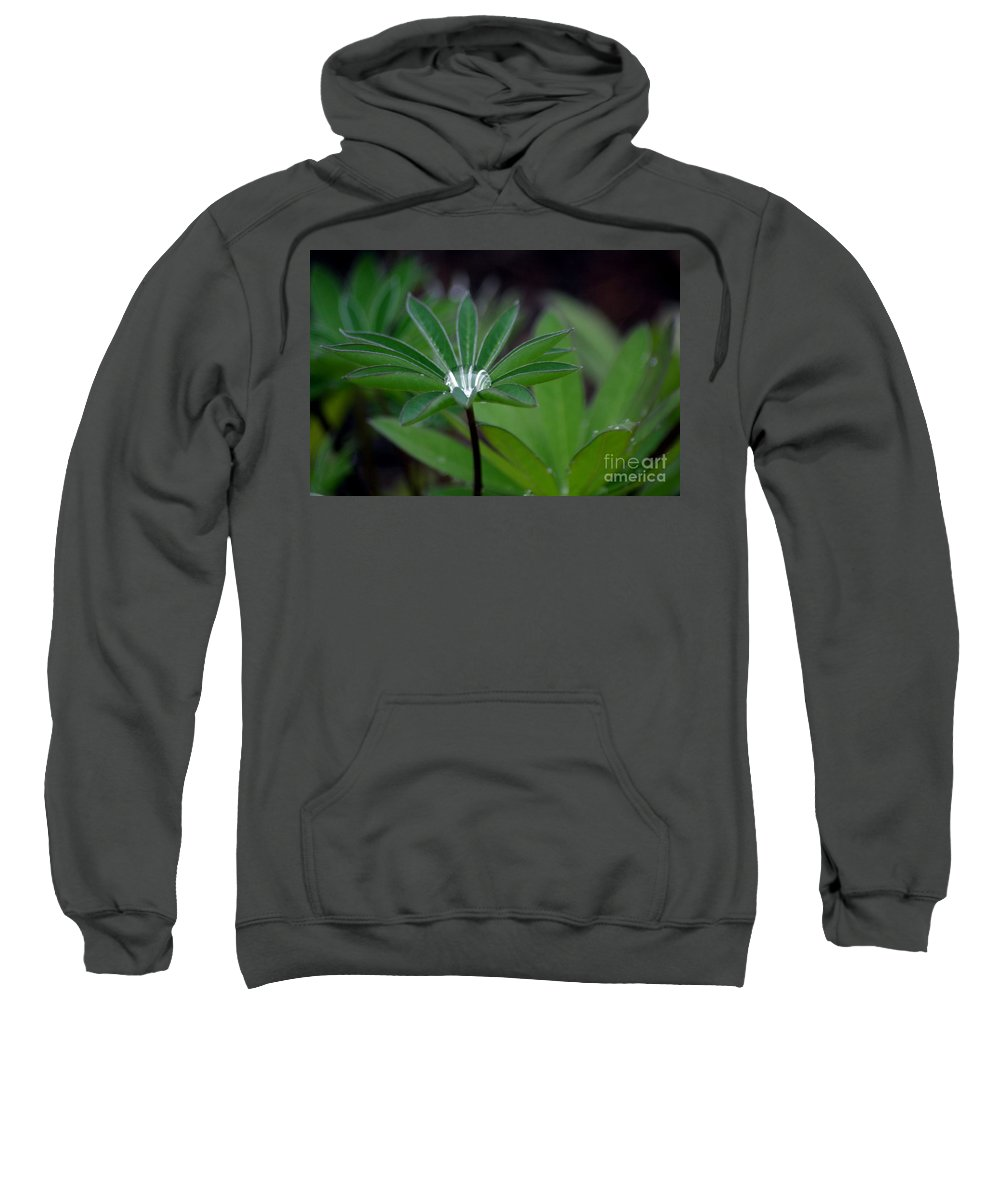 Green Sweatshirt featuring the photograph The Drop by Living Color Photography Lorraine Lynch