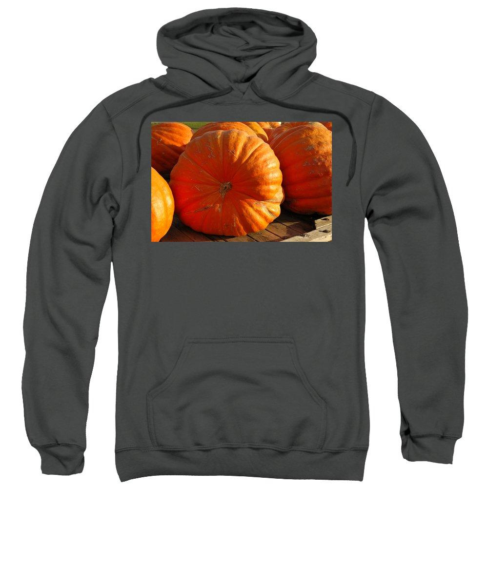 Food And Beverage Sweatshirt featuring the photograph The Great Pumpkin by LeeAnn McLaneGoetz McLaneGoetzStudioLLCcom