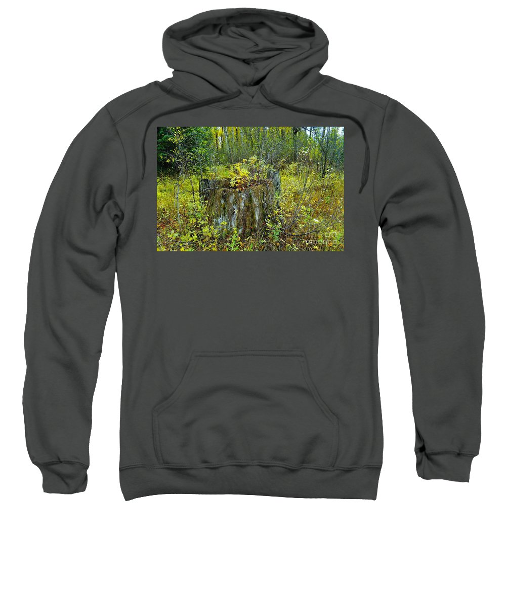 Autumn Sweatshirt featuring the photograph The Ongoing Struggle by Jeff Swan